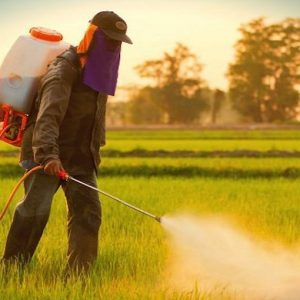 Melanoma, esposizione a pesticidi aumenta il rischio