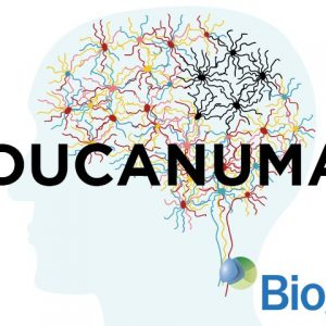 La FDA approva Aducanumab, il primo farmaco efficace per la cura