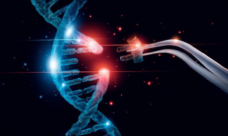 Talassemia, corretta la mutazione genetica che causa la forma più grave