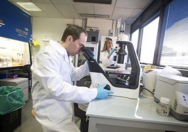 Tumori, scoperto gene che regola l'interferone ß