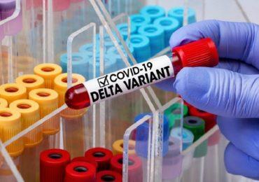 Coronavirus, il punto sulla variante Delta: età media, efficacia dei vaccini e sintomi