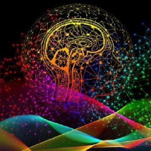 Declino cognitivo, la riduzione di una molecola infiammatoria contrasta la perdita di memoria