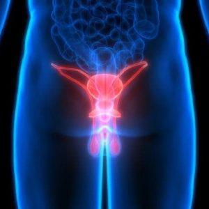 Noduli al testicolo: sintomo di possibile tumore?