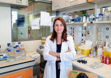 Sclerosi multipla progressiva: bloccando una proteina si può ridurre l'infiammazione