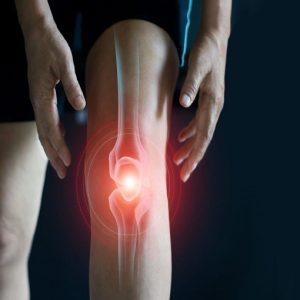 Usura della cartilagine del ginocchio: una piossibile soluzione dai condrociti nasali