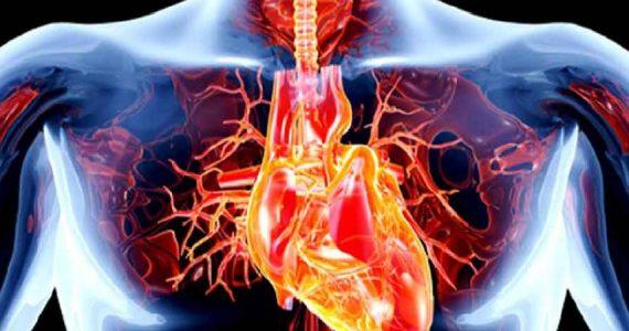Valvole cardiache malate: nuovo dispositivo le ripara